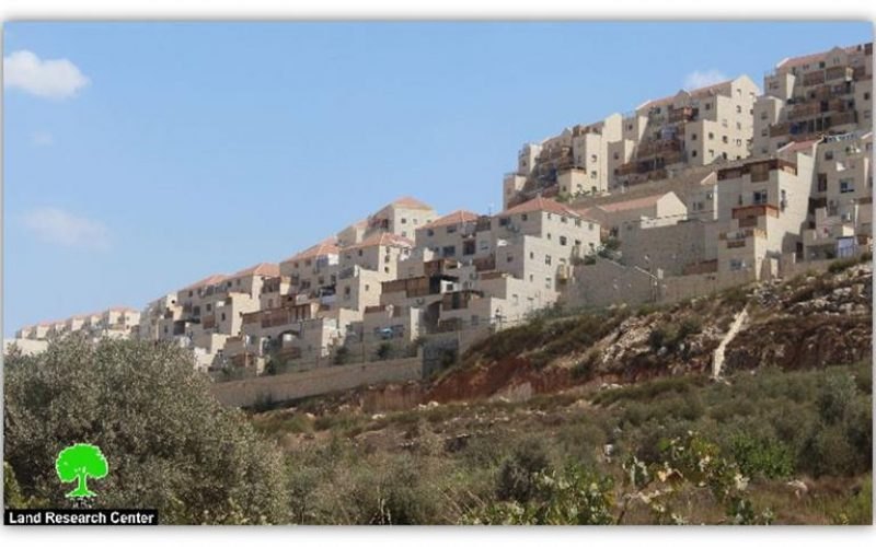 Israeli colonies spread all over Palestinian lands as cancer