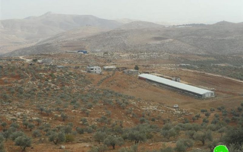 Itamar colonists ban residents of Al-Yanun village from picking olives