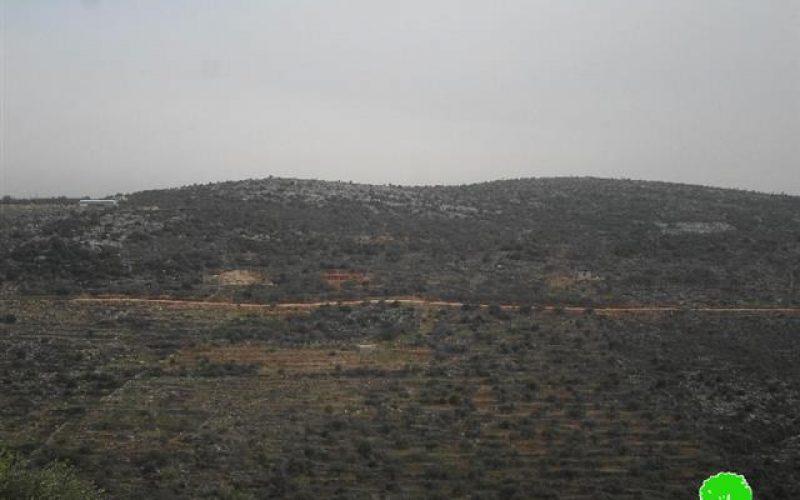 إخطار بإخلاء ارض زراعية وتقطيع أشجار في واد قانا