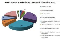 Israeli Violations in the Occupied Palestinian Territory –October 2015
