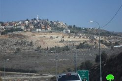Expansion works in Shilo colony