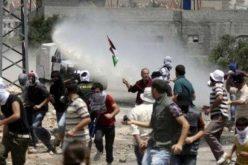 مياه الصرف الصحي أداة  يستخدمها الاحتلال في معاقبة الفلسطينيين