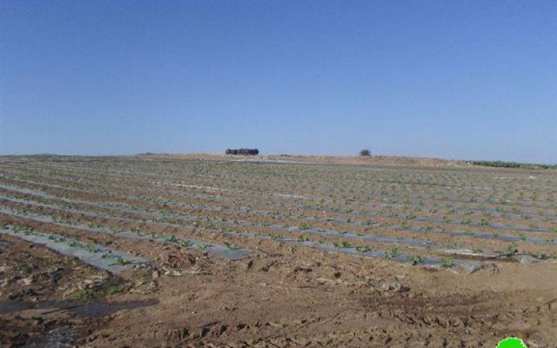 الاحتلال يلاحق الأراضي الزراعية ويصادر مضخات المياه في منطقة الدير شرق قرية عين البيضا
