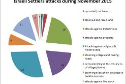 Israeli Violations in the Occupied Palestinian Territory –November 2015