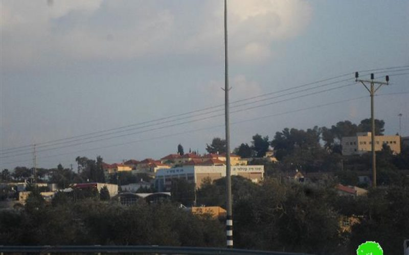 """Israel transfer 30 dunums from Deir Istiya and Jeinsafout villages into """"State Lands"""""""