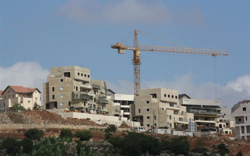 """""""Declared as State Land"""" The Israeli Authorities expropriated 30 Dunums in Deir Istya & Jinsafut"""
