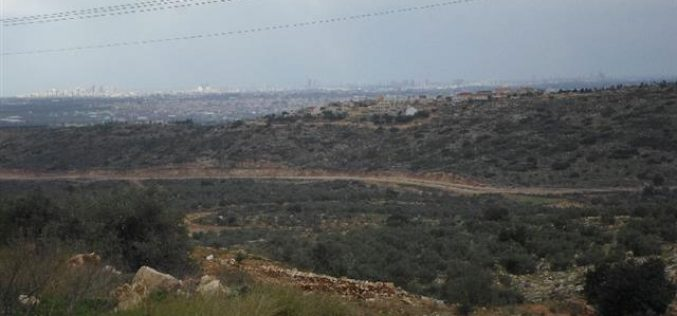 An Israeli order to confiscate 93 dunums from Azzun village to open a bypass road