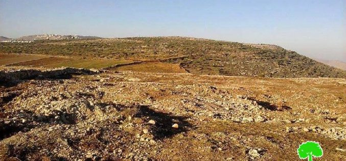 The Israeli occupation confiscates agricultural machineries at a Nablus rehabilitation site