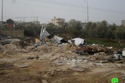 The occupation forces demolish a carpentry workshop and a sheep farm in Qalqiliya