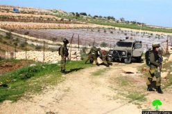 The Israeli Occupation Forces demolish an agricultural structure in Beit Ula village