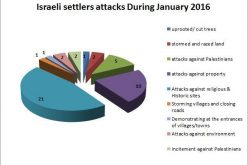 Israeli Violations in the occupied Palestinian territory – January 2016