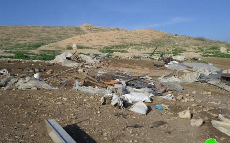 The Israeli Occupation Forces demolish tents in the Tubas area of Dhra Awwad