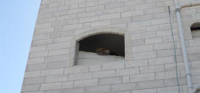 """""""منذ بداية الانتفاضة الاحتلال هدم 25 مسكناً بذريعة الأمن"""" <br> تدمير وإغلاق شقة عائلة السكافي بمدينة الخليل"""