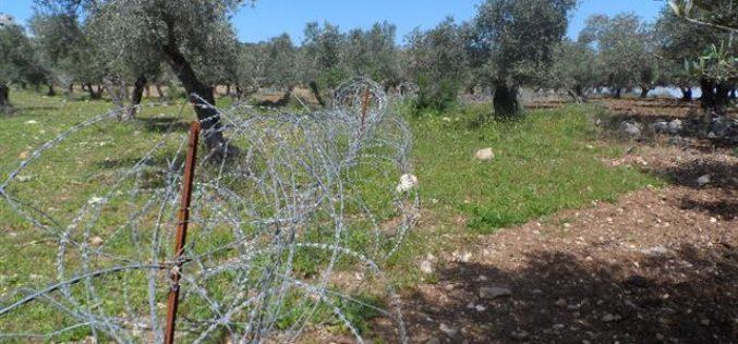 بهدف تقييد حركة تنقل المواطنين والمزارعين, جيش الاحتلال يشرع باقامة سياج فاصل على طول الأراضي الزراعية جنوب بلدة يعبد