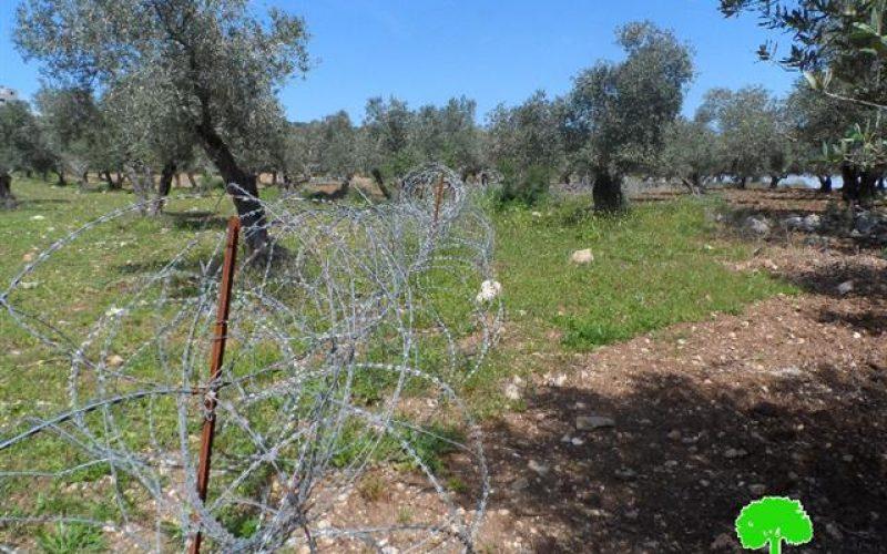Israeli Occupation Forces set up a fence alongside agricultural lands of Yabad town