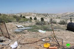 Israeli occupation municipality in Jerusalem demolish structures and uproots trees in the Jerusalem neighborhood of At-Tur
