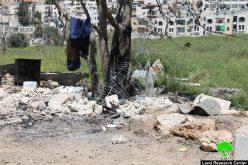 جرافات الاحتلال تهدم قفص لتربية الحمام وتهدم سور استنادي ومخزن وتقتلع 5 أشجار في حي الصوانة في مدينة القدس المحتلة بحجة عدم الحصول على ترخيص