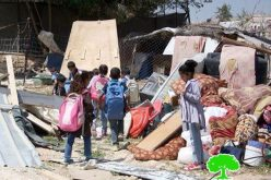 الاحتلال يهدم ثلاثة منازل في عدة تجمعات بدوية في الخان الأحمر / شرقي القدس المحتلة