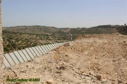 """For Security Purposes"" The Israeli Bulldozers razed about 2 dunums of Lands in Al-Khader town northwest of Bethlehem Governorate"