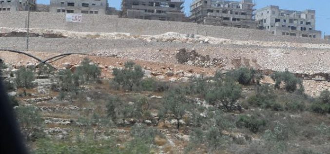 Founded on archeological ruins: Leshem outpost is approved as new Israeli colony