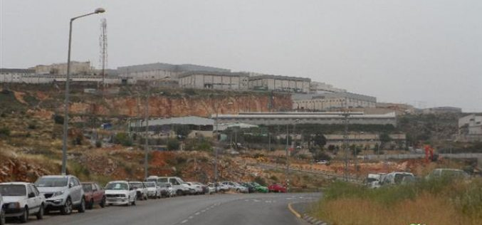 Expansion works on Israeli Arial industrial zone at the expense of Salfit lands