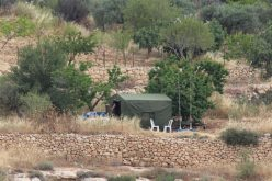 Israeli Violations in the Occupied Palestinian Territory- May 2016