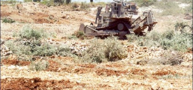 An Assessment of the Israeli Practices on the Palestinian Agricultural Sector