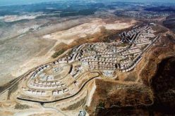 An Overview of Israeli's Settlement Policy and the Discontents With The Peace Process