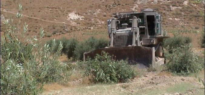More Land Confiscated to build By-Pass Road in Za'tara