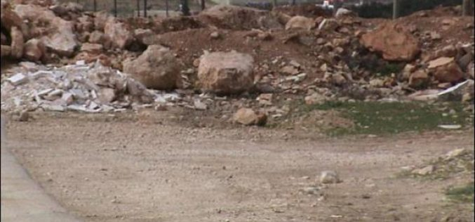 Israeli Settlers Annex More Lands in Tequ' town