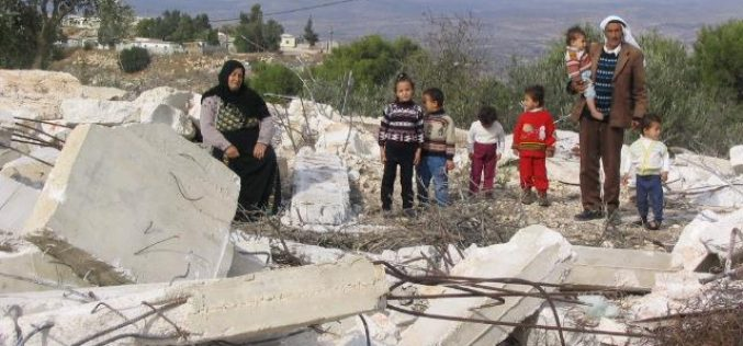 The Israeli campaign of house demolition in Occupied Jerusalem during the year 2003
