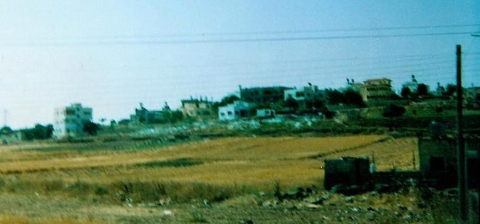 The Segregation Wall hits more Palestinian lands in Qalqilyia district