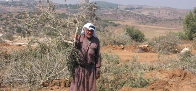 Constructing the Segregation Wall are in Deir Samit village – Hebron