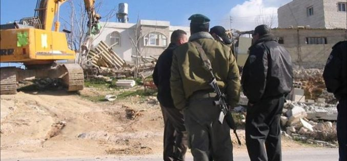 Al-Walajeh Devastated by Israeli Bulldozers