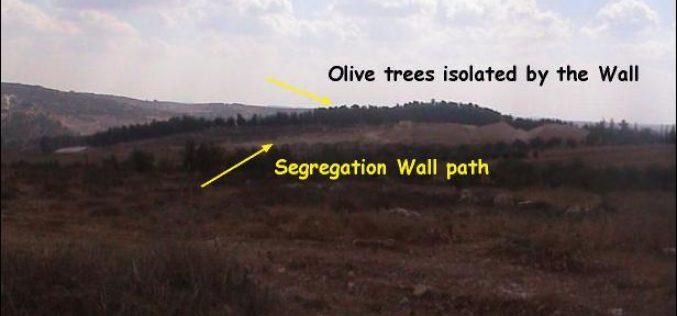 New Israeli military orders in Al Jab'a village – Bethlehem Governorate