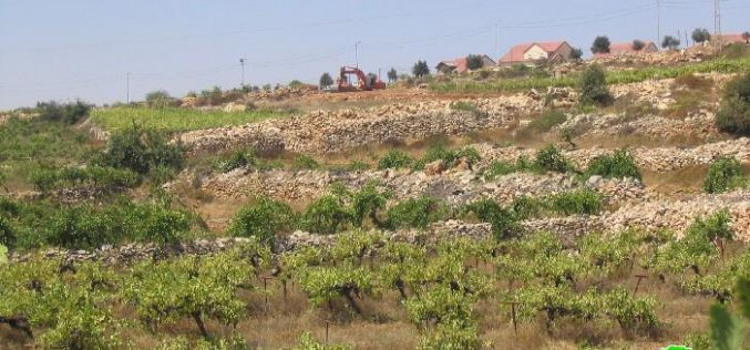 In challenge of High Court decision Resumption of Wall works around the settlement of Karmei Zur