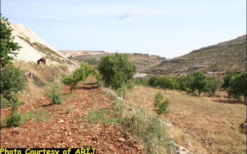Artas village lands are targeted for settlement expansion