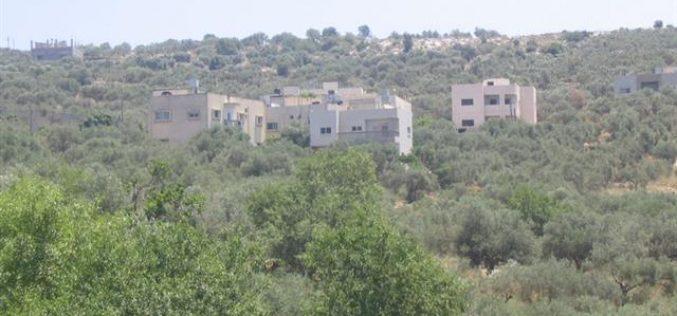 سلطات الاحتلال تخطر عدد من المواطنين في قرية ياسوف بوقف البناء في مساكنهم وتهددها بالهدم