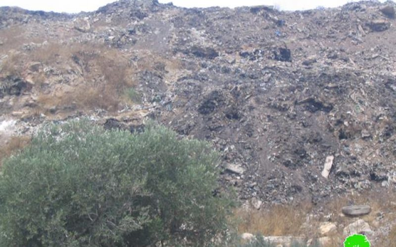 The Israeli established garbage dumpsite between Azzun and Jayyus  and its effect on humans and environment.