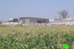 المصانع الإسرائيلية في مناطق غرب مدينة طولكرم و أثرها على الإنسان و البيئة الفلسطينية