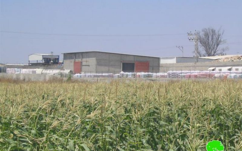The Effects of Israeli Factories on humans and environment in Tulkarem City