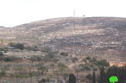 أعمال توسعية جديدة لمستعمرة ايتمار على حساب أراضي بلدة عقربا