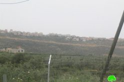 """Israeli Occupation Authorities Transform the so- called """"Judea and Samaria College"""" in Ariel Colony into a University"""