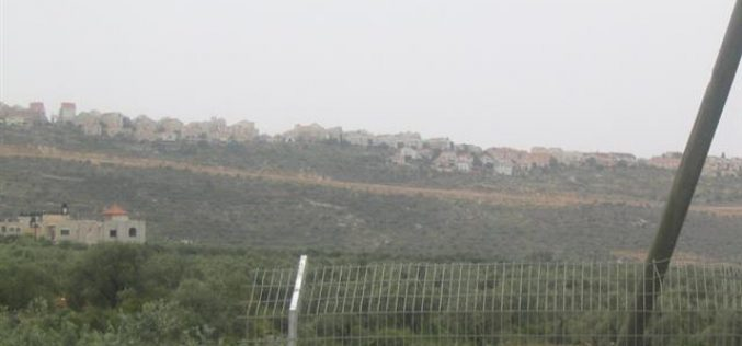 "Israeli Occupation Authorities Transform the so- called ""Judea and Samaria College"" in Ariel Colony into a University"