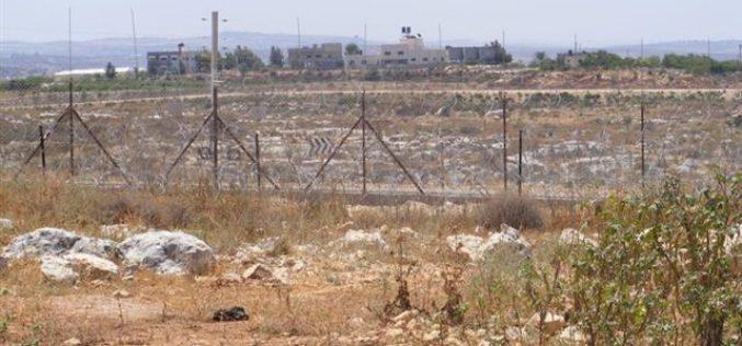 جدار العزل الإسرائيلي يحرم عشرات المزارعين الفلسطينيين من خربة رأس طيرة من الوصول إلى أراضيهم الزراعية
