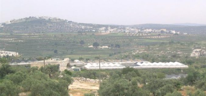Israeli Occupation Authorities Mislead the Local and International Media with the Removal of an outpost in the West Bank