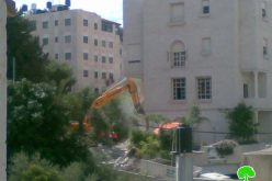 Israeli Occupation Forcers Demolished Abu Aisha Building in Beit Hanina