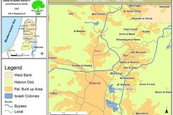 Israeli Occupation escalates War on Palestinian Livelihoods <br> The Prevention of Land Rehabilitation in Hebron and Bethlehem Governorates