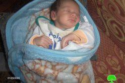 الطفل رامز الشويكي .. مولود آخر يرى النور على حاجز الزعيم العسكري