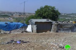 Stop Work Orders against Palestinian Structures in the Town of Ya'abad